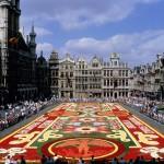 Бельгия, цветы
