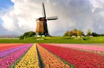 Нидерланды полезная информация