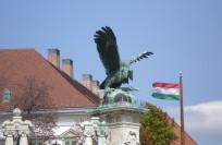 Таможня Венгрии