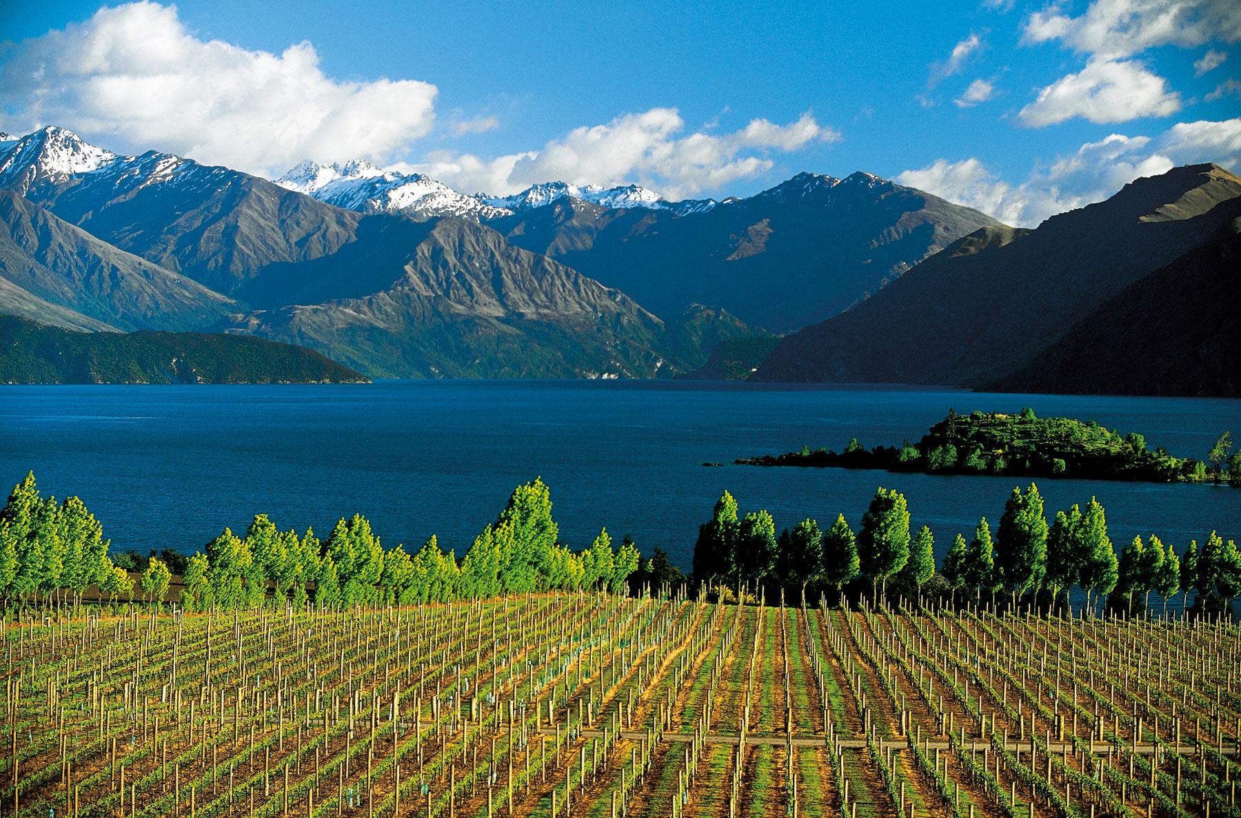 Климат Новой Зеландии