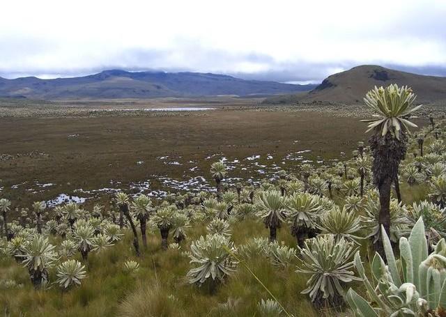 Природа Эквадора