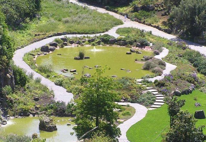Ботанический сад Вьера Клавихо