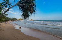 Шри-Ланка в августе