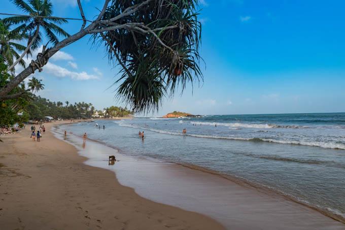 Шри-Ланка в августе - отдых и погода на Шри-Ланке