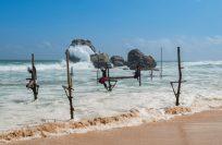 Шри-Ланка в апреле