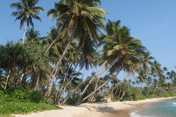 Шри-Ланка в мае