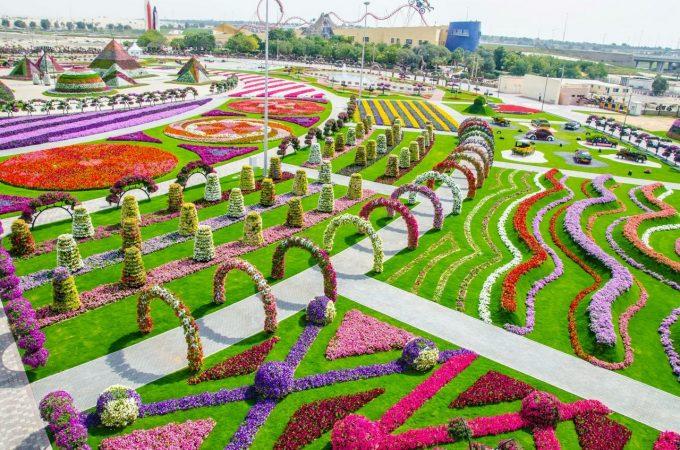 Парк цветов и бабочек