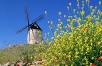 Испания: полезная информация
