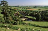 Природа Великобритании
