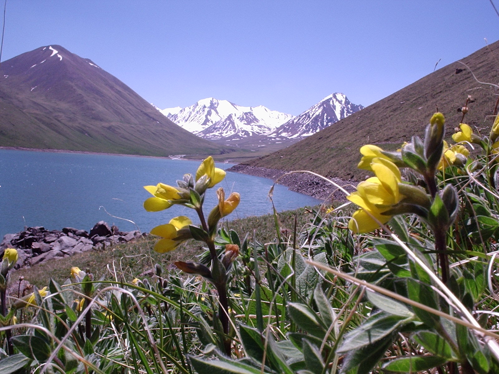 Климат Бутана