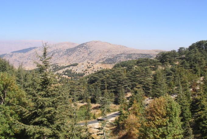 Климат Ливана