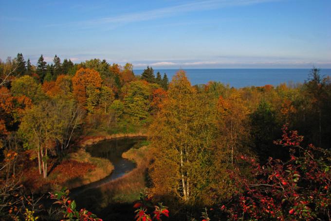 Климат Эстонии