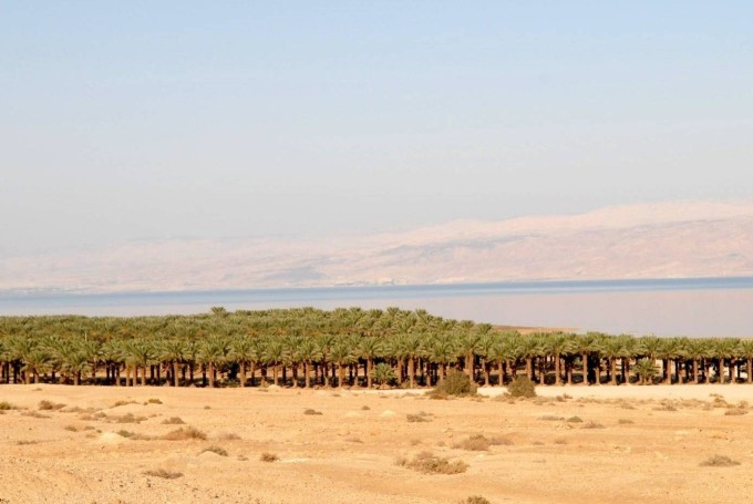 Климат Израиля