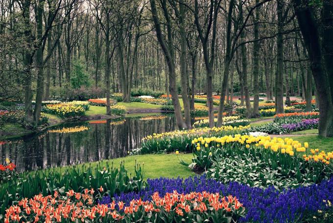 Природа Нидерландов