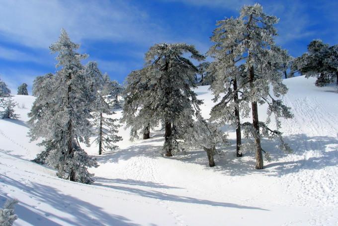 Погода на Кипре в декабре