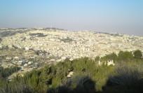Израиль в июле