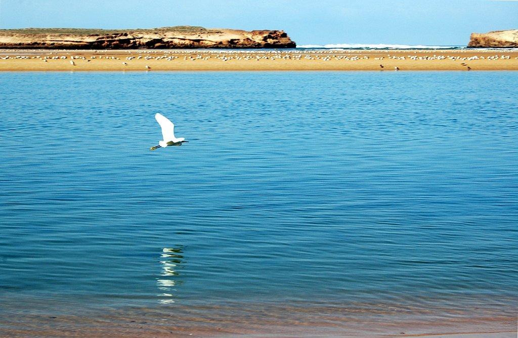 Пляжи курорта Уалидия