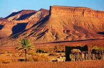 Таможня Марокко