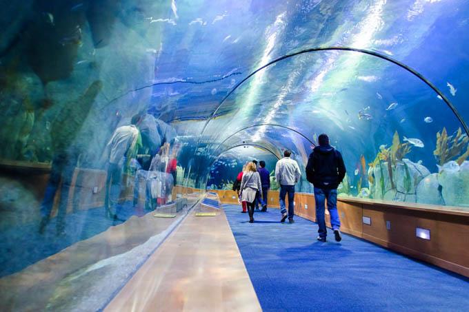 Океанографический парк в Валенсии, галерея