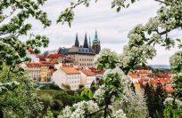 Погода в Праге по месяцам